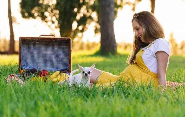 Hamilelikte Ve Evcil Hayvanlar